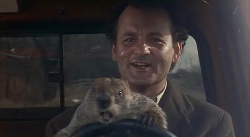 Bill Murrar y la marmota Phil